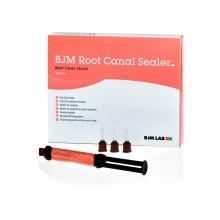 BJM Root Canal Sealer - Антибактериальный двухкомпонентный силер
