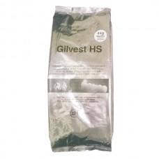 Гилвест HS Gilvest HS (4кг.), BK Giulini